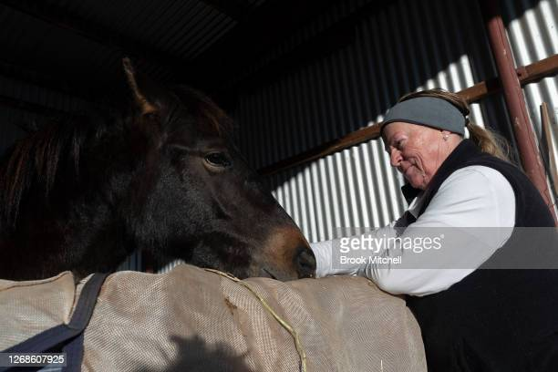 Horse trainer Nikki Alberts is pictured with the formerly Wild Brumby named Bandit at the White Alpine Equine horse farm in Adaminaby on August 23...