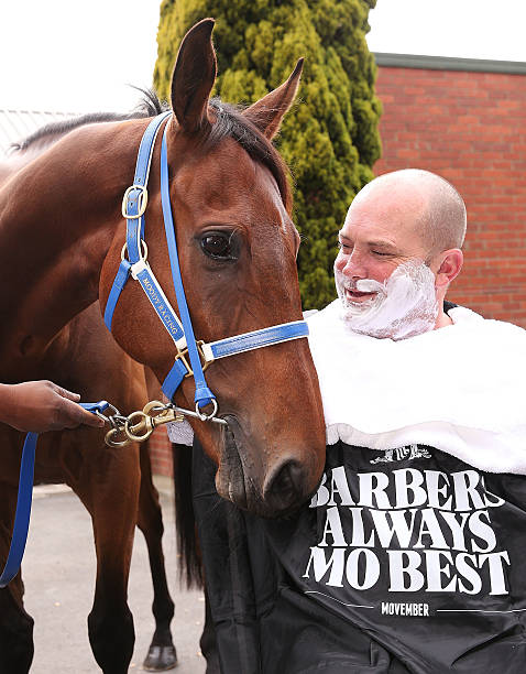 Image result for horse barber Ireland