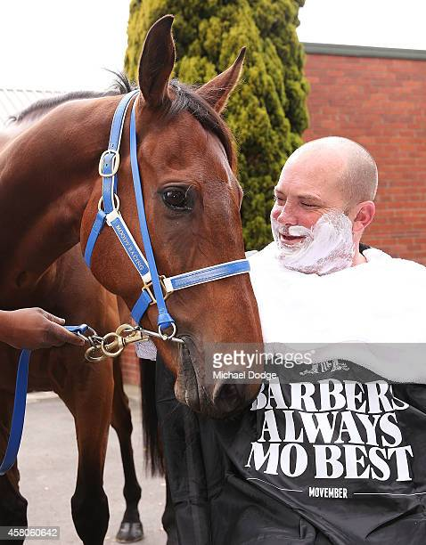 Horse trainer Peter Moody poses with Brambles before being shaved at Peter Moody Stables at Caulfield Racecourse on October 30 2014 in Melbourne...
