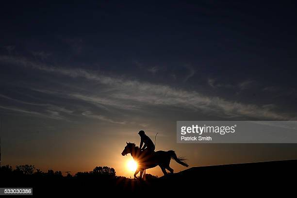 A horse trains on track during a training session a day before the 141st running of the Preakness Stakes at Pimlico Race Course on on May 20 2016 in...