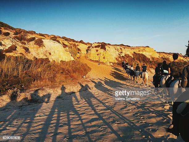 horse trekking at donana park, andalucia - donana national park stock photos and pictures