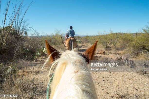 horse viewpoint rear view of a woman on a horseback ride in the arizona desert - arizona stock pictures, royalty-free photos & images