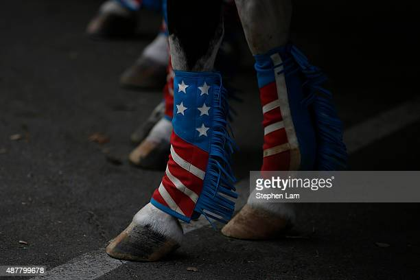 A horse wearing Americanthemed decoration is seen during a parade honoring Alek Skarlatos Anthony Sadler and Spencer Stone for their August 21...