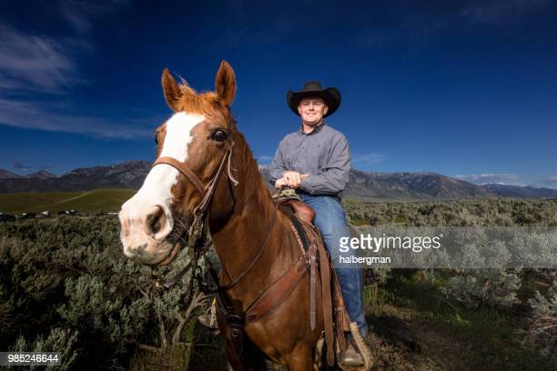 Horse with Rider Peering at Camera
