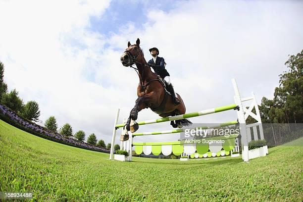 horseback rider jumping hurdle - evento ecuestre fotografías e imágenes de stock