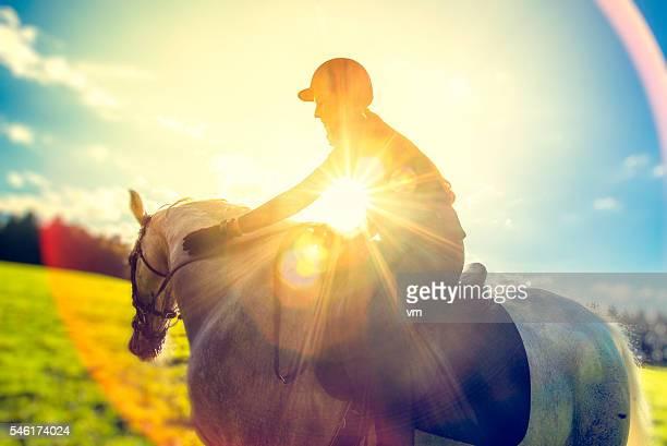 Horseback rider on a field
