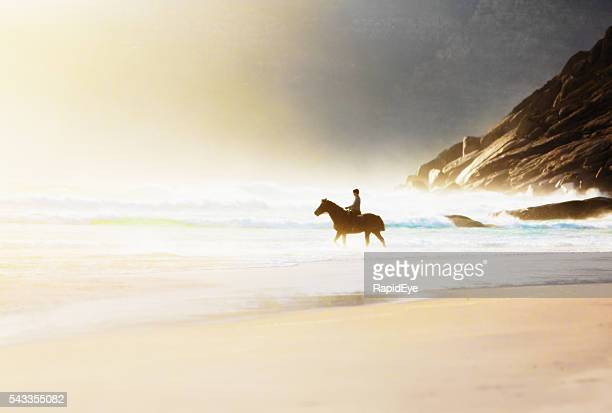 Horseback rider on beautiful deserted beach in misty pastel colors