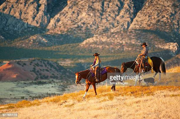 horseback riders - recreational horseback riding stock pictures, royalty-free photos & images
