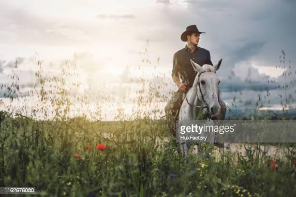 paardrijden is goedkoper dan therapie! - cowboy stockfoto's en -beelden