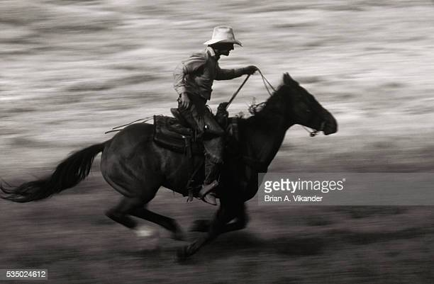horseback riding over big river meadows - big meadows stock pictures, royalty-free photos & images