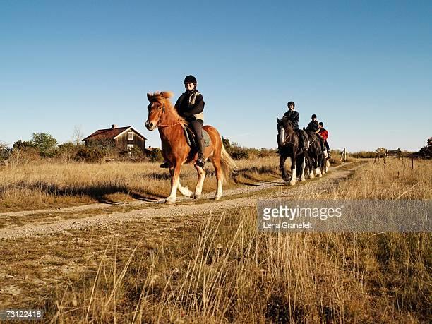 horseback riding. - エーランド ストックフォトと画像