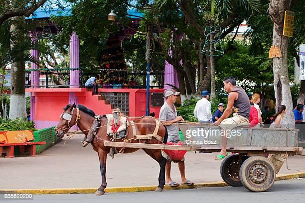 Horsecart in Nicaragua