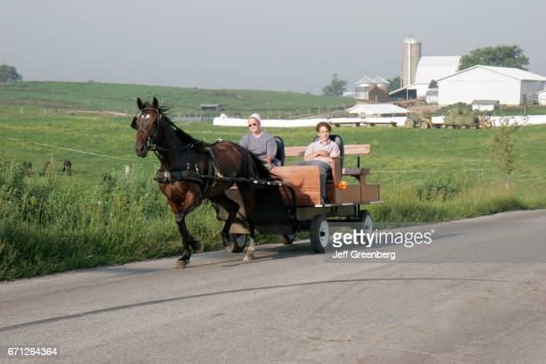 A horsedrawn Amish buggy in Howe