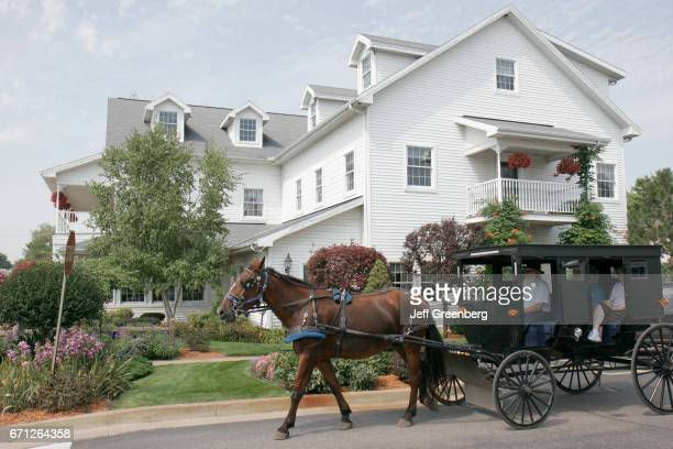 A horsedrawn Amish buggy ride on Harrison Street