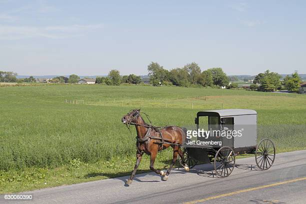 Horsedrawn buggy Amish community