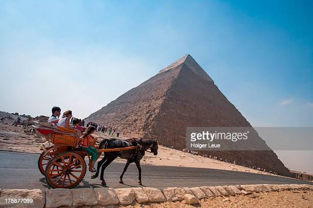 Horse-drawn carriage at Pyramids of Giza