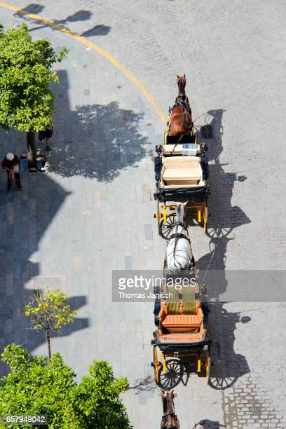 Horse-drawn carriage from above
