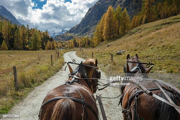 Horse-drawn carriage, Rosegtal, Switzerland