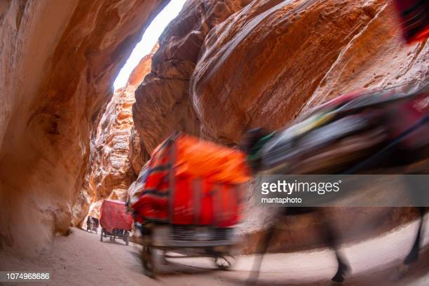 horse-drawn carriage to the siq, petra - luogo d'interesse nazionale foto e immagini stock