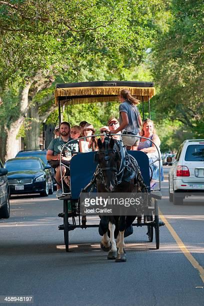 charleston horse-drawn carriage tour - charleston south carolina stock pictures, royalty-free photos & images