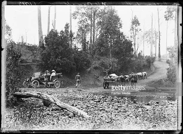 Horsedrawn cart and an automobile stopped on the way to Bulga Plateau New South Wales 1913 [picture] [nlapicvn6303962]