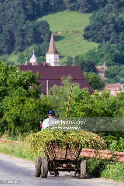 Horse-drawn cart carrying hay, Sibiu, Transylvania, Romania