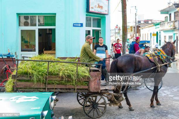 Horsedrawn cart with grass for feeding animals The vehicle mingles in the city traffic during the daytime