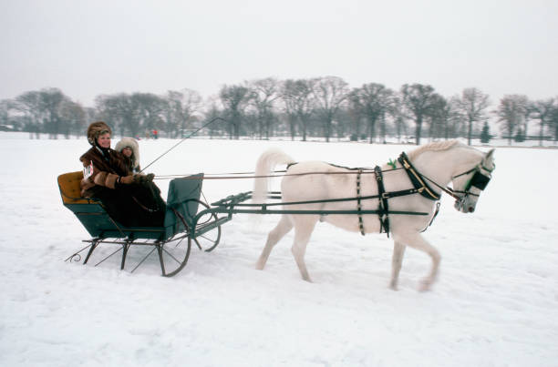 Horse-Drawn Sleigh at Winter Carnival