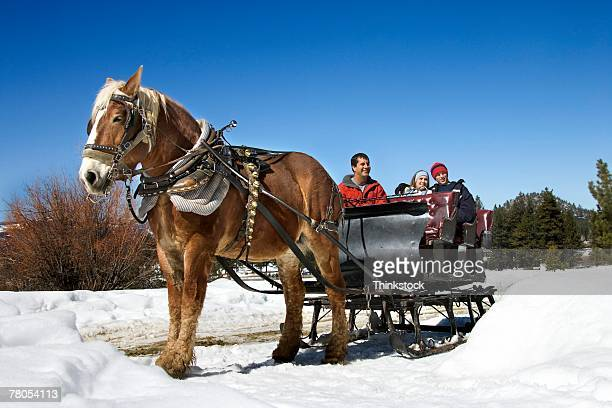 Horse-drawn sleigh with couple and driver
