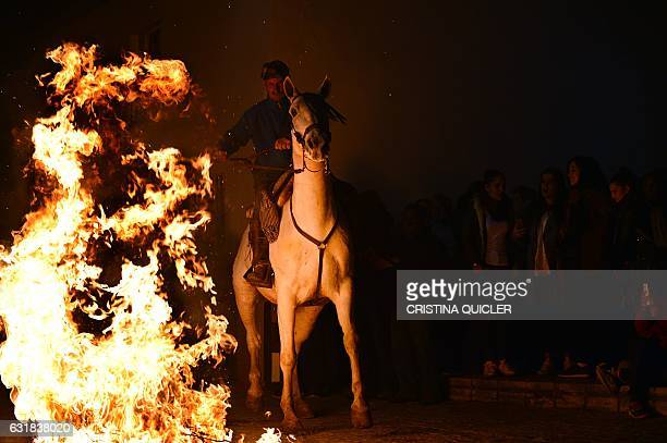 A horseman rides before jumping over a bonfire during the celebrations of the traditional religious festival Luminarias in honour of San Antonio Abad...