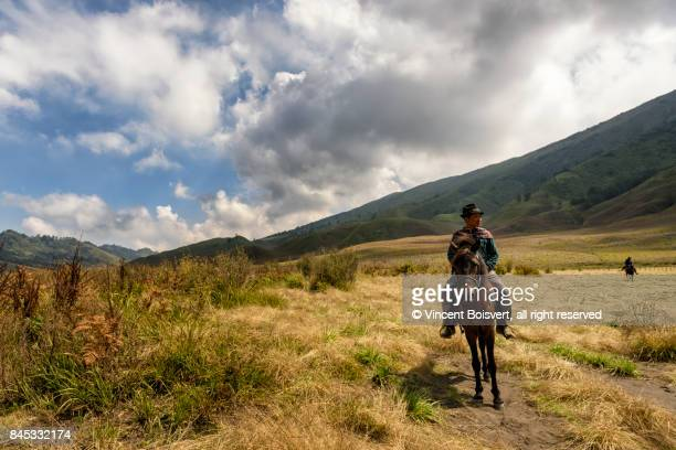 horseman riding in the bromo caldera, java, indonesia - bromo crater stock pictures, royalty-free photos & images