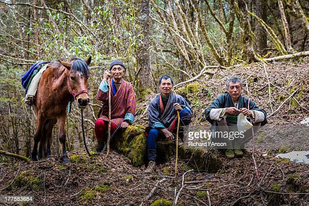 horsemen beside trail in haa valley - valley stock pictures, royalty-free photos & images