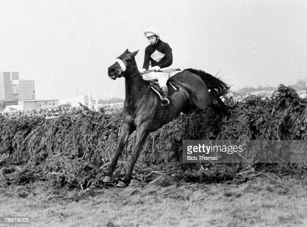 HorseRacing 30th March 1974 Grand National Aintree Picture shows legendary racehorse Red Rum jumping a fence ridden by Brian Fletcher on his way to...