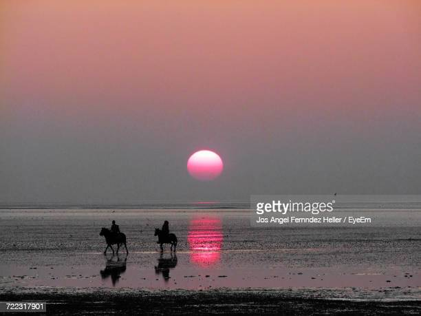 horseriders against sky during sunset - pink moon stock pictures, royalty-free photos & images