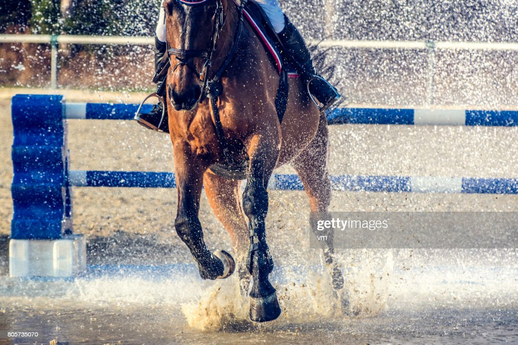 Horseriding through a water curtain : Stock Photo