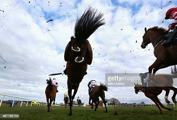 Wetherby Racecourse Pictures and Photos - Getty Images