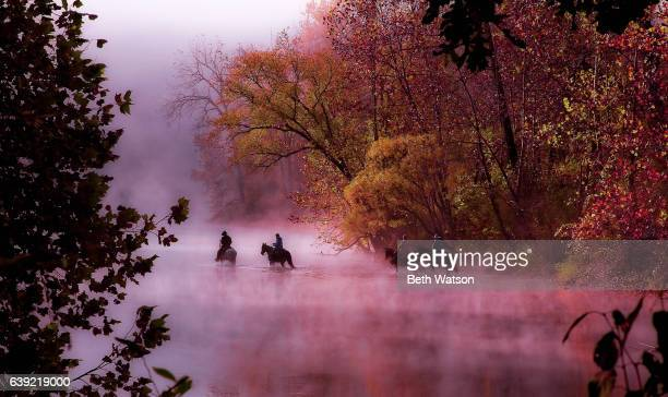 horses and riders crossing the river on a foggy autumn morning - ozark mountains stock pictures, royalty-free photos & images