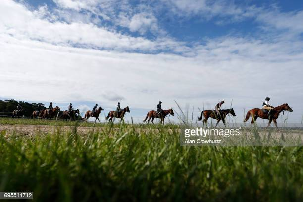 Horses and riders make their way back after working on the Warren Hill gallops at Newmarket on June 13 2017 in Newmarket England