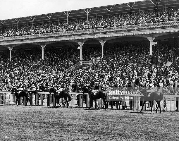 Horses and riders parade in front of the stands before the start of the Goodwood Cup at Goodwood race course 28th July 1949 The horses are...