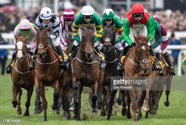 Horses and riders round the first bend during the first race the JCB Triumph Hurdle Race during the Gold Cup Day at Cheltenham Festival at Cheltenham...