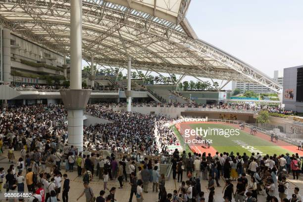 Horses are paraded around the paddock prior to a race at Hanshin Racecourse on June 24 2018 in Takarazuka Japan