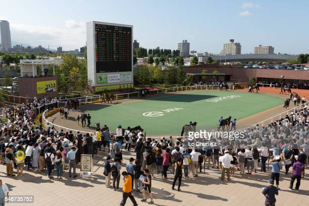 Horses are paraded around the paddock prior to a race at the Sapporo Racecourse on August 19 2017 in Sapporo Hokkaido Japan Sapporo Racecourse...