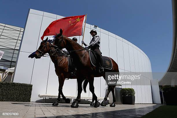 Horses are seen during the Chinese Festival of Racing launch event at The Star on December 12 2016 in Sydney Australia