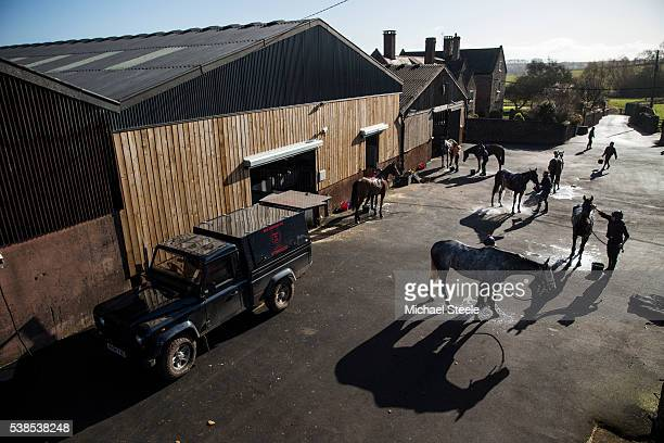 Horses are washed down after third lot at Sandhill Racing Stables on March 25 2016 in Minehead England Sandhill Racing Stables set in 500 hundred...