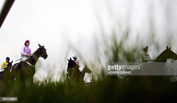 Horses await the start of a during the opening day of The Cheltenham Festival 15 March 2005. More than 100,000 people are expected to attend the...