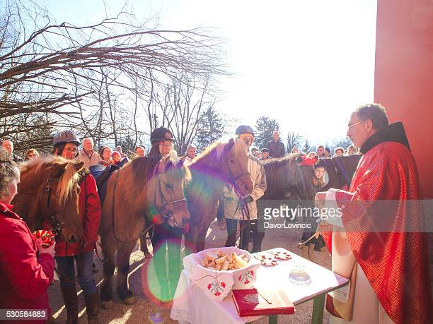 Horses Blessing at Christmas