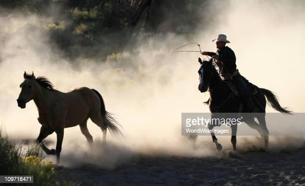 カウボーイと馬のラングラーシリーズ 3