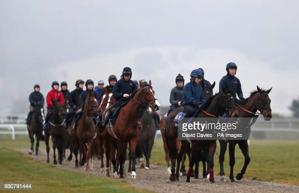 Horses from Gordon Elliott's yard on the gallops during a preview day ahead of the 2018 Cheltenham Festival meeting