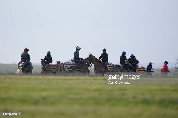 Horses from Nicky Henderson's Seven Barrows Yard take to the Gallops on February 9 in Lambourn England Horse racing across the UK was suspended this...