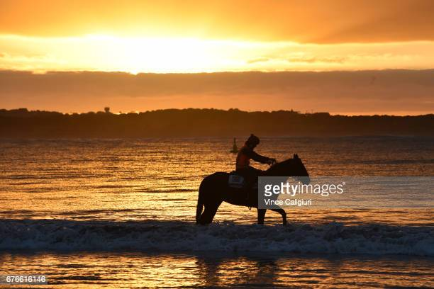 Horses from the Darren Weir stable are seen at Lady Bay beach during a trackwork session ahead of the Warrnambool Racing Carnival on May 3 2017 in...